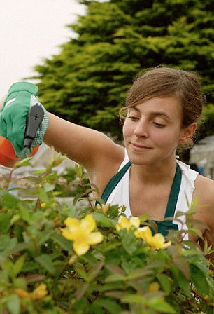 Pyrethroid pesticide is found in pest control sprays