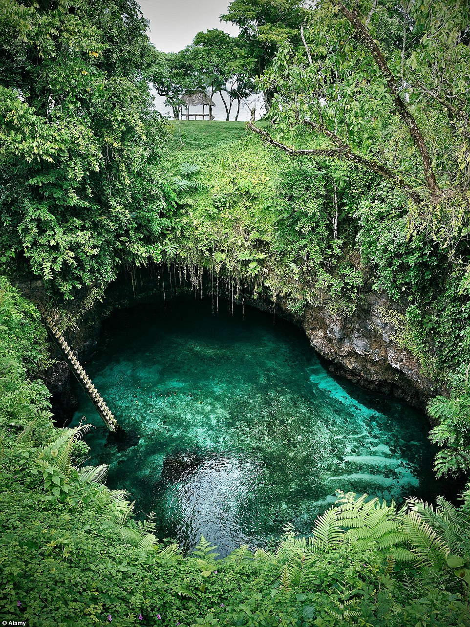 The pool is maintained by water flowing in from the South Pacific Ocean through a number of channels and tunnels