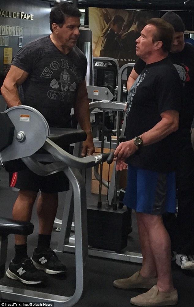 Vs Schwarzenegger Lou Ferrigno Arnold