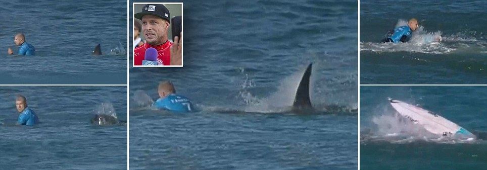 Mick Fanning fights off a SHARK as it attacked him during J-Bay Open