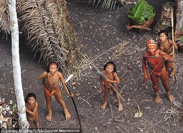 Under threat: Members of the Mashco Piro tribe on the banks of the Madre de Dios river, which runs through their ancestral land, the Manu National Park