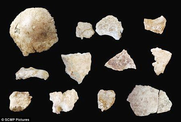 Archaeologists found sixteen fragments of skull from Xuchang Man in 2012, shown above. They are being studied in an attempt to end the long running debate about how China's current population evolved