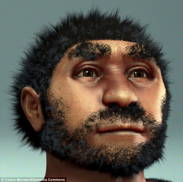 The fossilised bones found at Xuchang are thought to fill in a gap in the evolutionary record between the time when Peking Man, shown in the reconstruction above, lived in China up to 780,000 years ago and modern humans who live there now