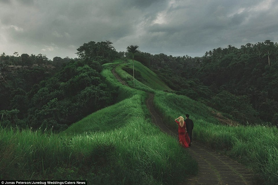 """Este é o segundo ano o seu """"Best of the Best Destination Fotografia 'concurso teve lugar (foto: Ubud, Bali)"""
