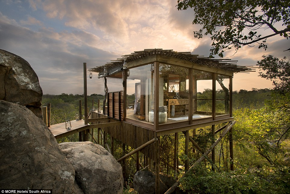 The Kingston Tree House is situated next to a magnificent rock and also has a bathroom space, which is glassed in from the outdoors