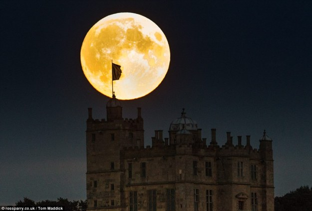 UK: The vibrant supermoon rises above the Stuart mansion of Bolsover Castle near Chesterfield in Derbyshire last night