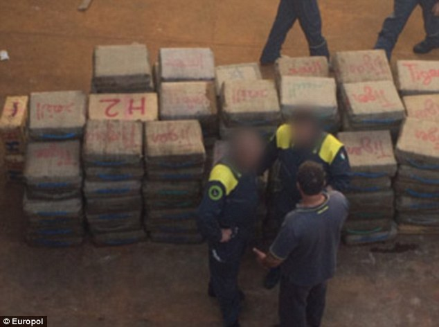 The 821 packages of cannabis, pictured, were hidden inside a cargo vessel registered in the Cook Islands