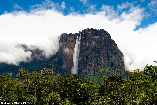The tallest waterfall in the world is Angel Falls, located in South America, which boasts a water cascade of 979 metres (3,211 feet)