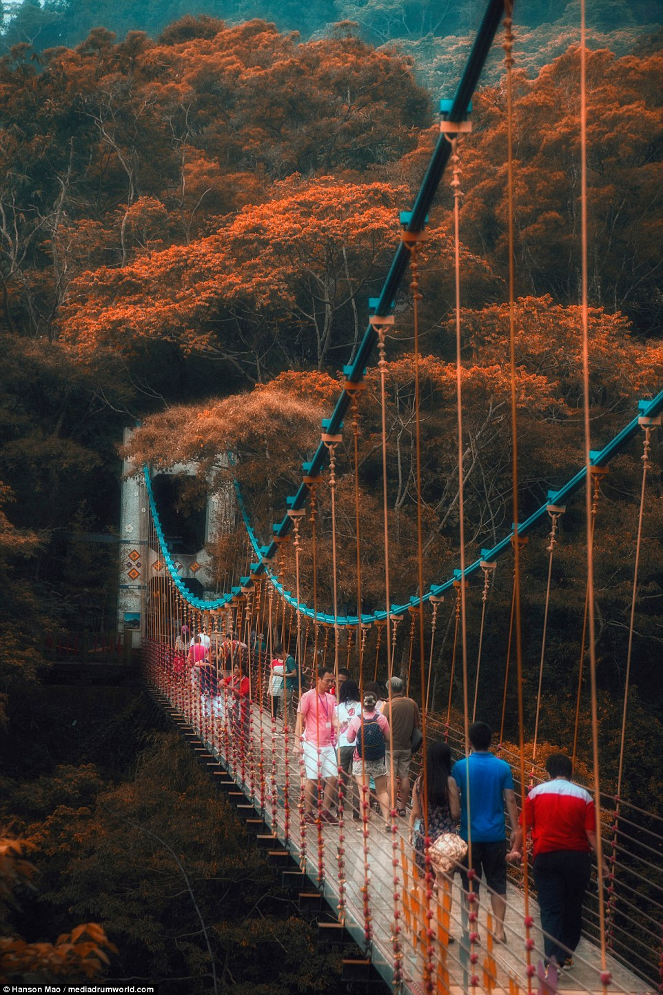 A new glass-bottomed bridge has become an instant hit with thrill-seeking tourists after opening in Nantou, Taiwan