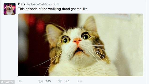 I Feel Like Death Kermit Drinking Milkshake Meme Generator