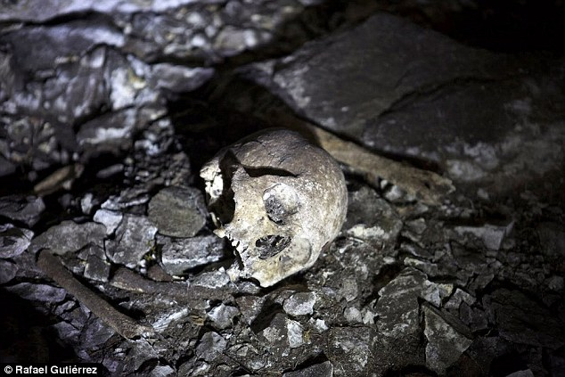 A team of explorers has discovered a complex of buildings and a necropolis they believe was used by the Inca for human sacrifices. They found human remains (pictured) in a complex of caves close to the ruins
