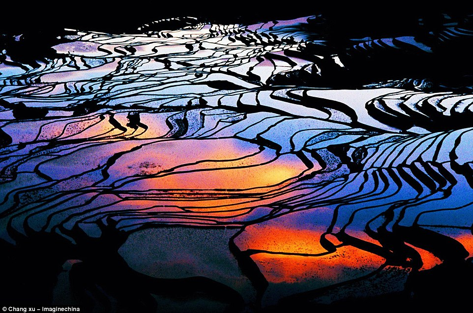 Mosaic beauty: The terraced rice fields in Yuanyang County become flooded paddies from December to April and create pools that resemble broken mirrors. As the sun sets, colours are scattered in the reflective waters