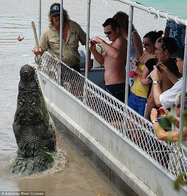 Image result for the kid who jumped from his dad's arms into the crocodile lake