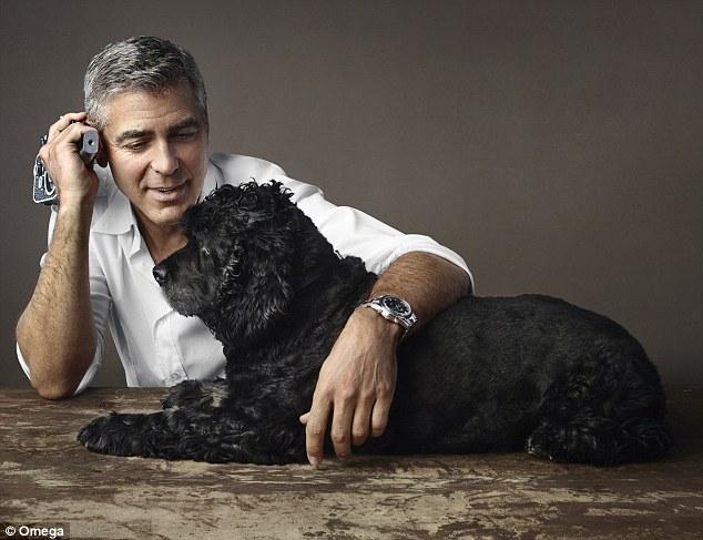 George Clooney Talks About Rescue Dog Einsteins