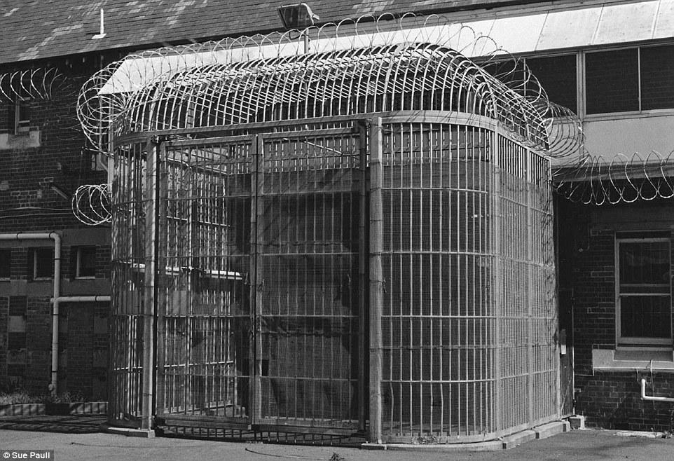 Gate Arm Guard
