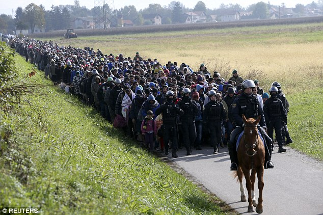 Concern: Fears are growing that ISIS is using the migrant crisis to sneak jihadists into Europe, after Norwegian police found 'hundreds' of brutal images of executions on refugees' mobile phones. Pictured, a mounted policeman leads a group of refugees and migrants near Dobova, Slovenia