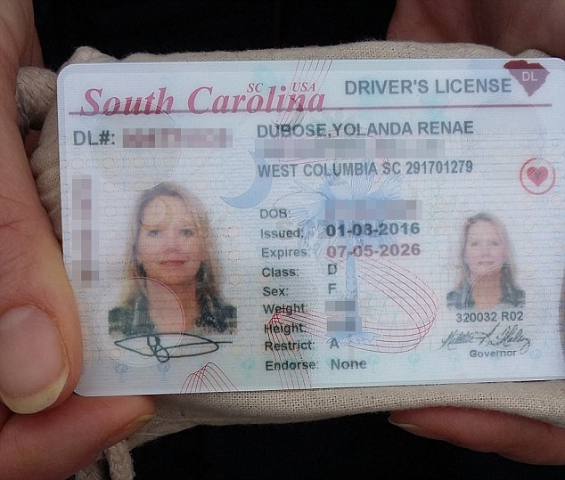 License North Carolina 2013 Carolina North Drivers 2013 Drivers License