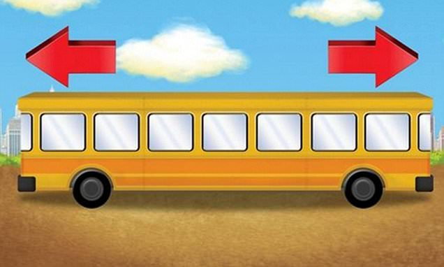 National Geographic bus test about direction leaves adults flummoxed