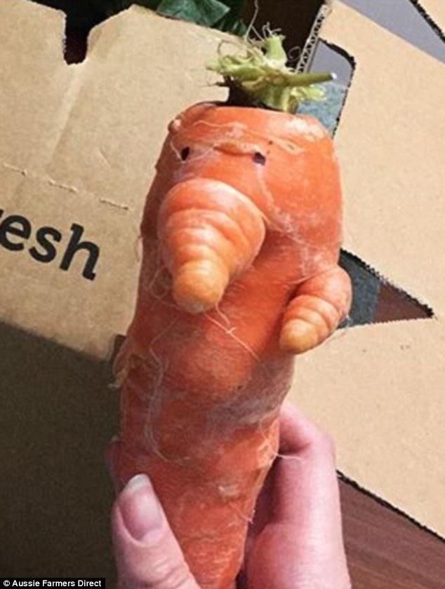 Farmers Direct Fresh Box