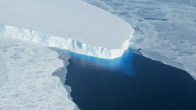 Some 150,000 penguins died after a massive iceberg grounded near their colony in Antarctica
