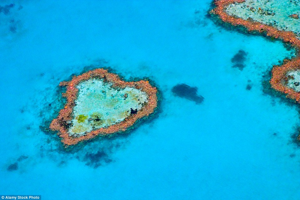 Heart of the ocean: If you are lucky enough to get a helicopter ride over Australia's Great Barrier Reef you should look out for Heart Reef, in Hardy Reef, which is a stunning composition of coral that has naturally formed into the shape of a heart