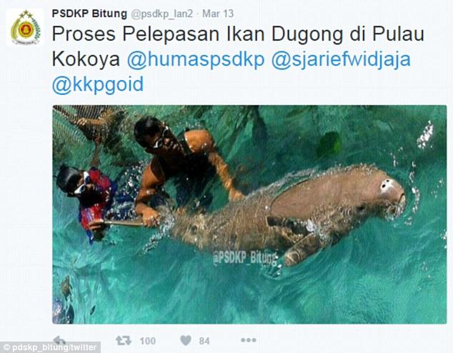 Indonesian authority finally set them free