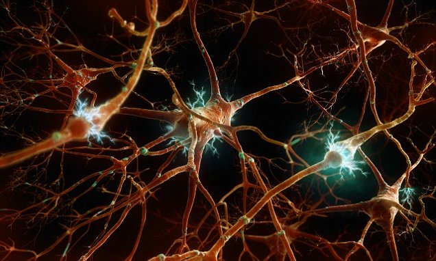 "Just Like Antimatter Changed Physics, ""Antimemories"" Could Revolutionize Neuroscience"