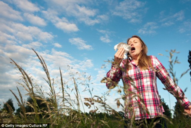 The temperature and the weather make a huge difference to the levels of pollen and other irritants [file photo]