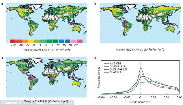 Os pesquisadores disseram que houve um aumento na estação de crescimento em várias partes do mundo, com até 50 por cento da área vegetada de superfície da Terra beneficiando do aumento do dióxido de carbono (ilustrado)