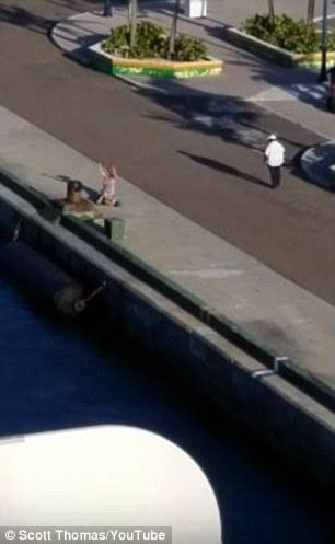 Metraje muestra a la mujer agitando los brazos como el crucero navega lejos