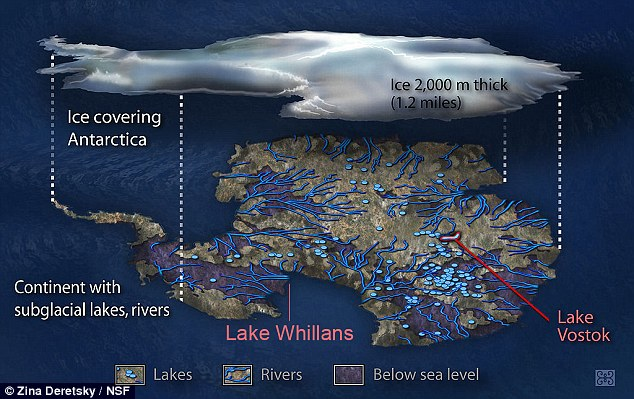 Lake Whillans, which lies 800 meters (2,600 feet) beneath the West Antarctic Ice Sheet, is similar to a wetland.