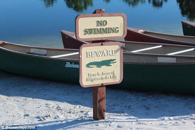 El Hyatt Regency Grand Cypress, a sólo millas del lugar de, tiene signos de advertencia de caimanes en su lago