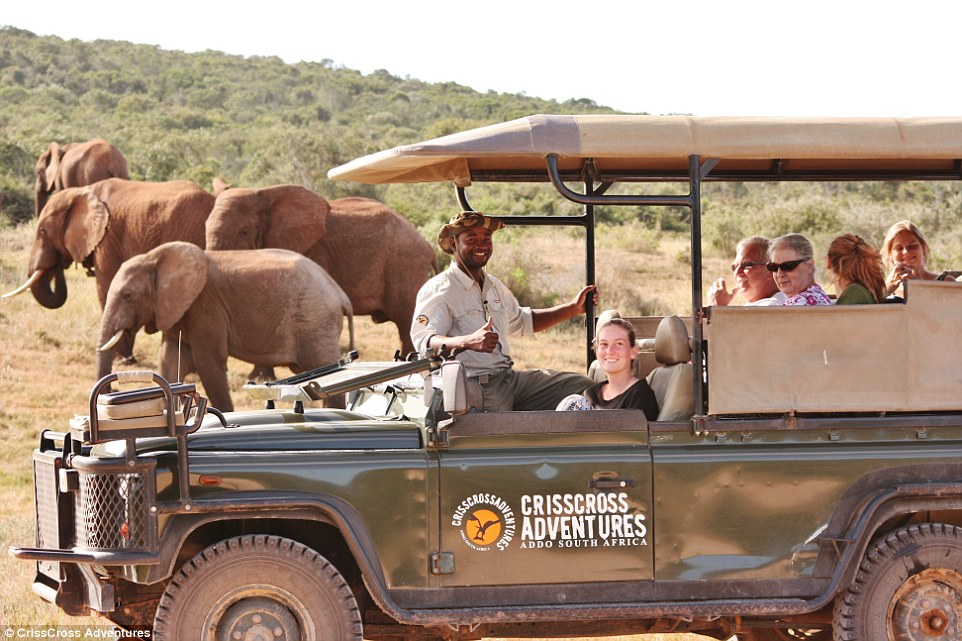 Into the wild: Wrap up warm as the sun starts to go down and take a drive through the Addo National Elephant Park in an open sided jeep