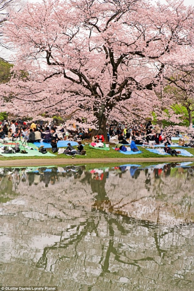 On sunny weekends, all sorts gather to Tokyo's Yoyogi Park for picnics, Frisbee, drumming, dancing and free festivals