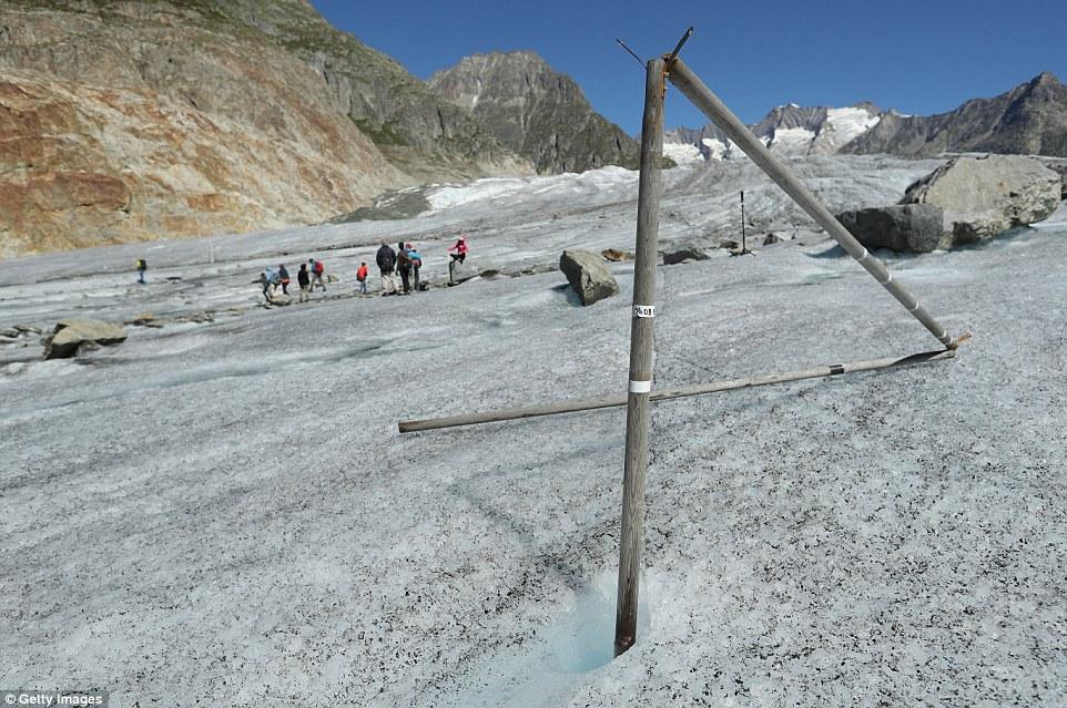 Un palo di legno che una volta era sepolto nel ghiaccio del ghiacciaio Aletsche ma si trova ora esposto come il ghiacciaio si riduce ad una velocità compresa tra i 33-43 piedi per anno (nella foto)