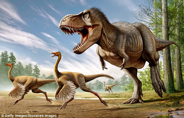 Image result for research says that birds and dinosaurs are from the same source