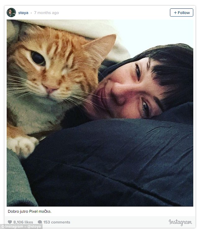 Stoya, the US hipster porn star, who admits she's 'highly skilled at avoiding pants' looking every bit the intellectual student in this picture of herself and a ginger moggy