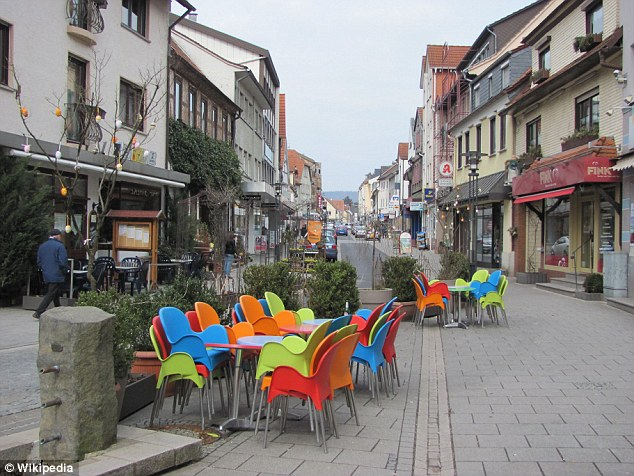 The bloody assault happened in the town of Schlüchtern (pictured) not far from Frankfurt in central Germany