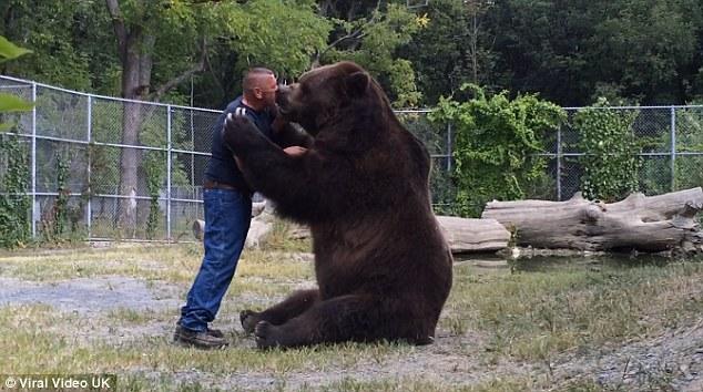Bear Cub Hugging Person