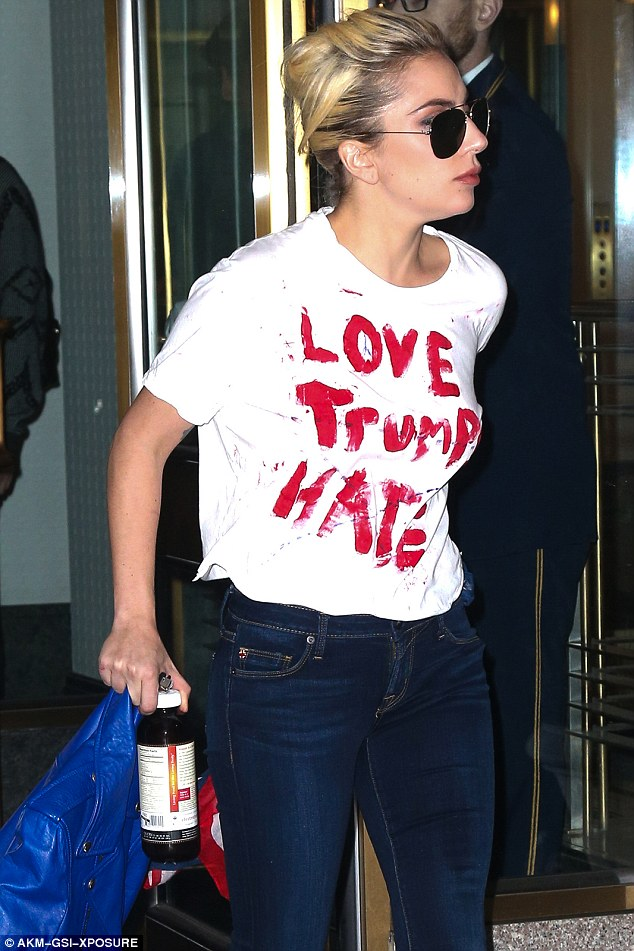 Image result for lady gaga  activist