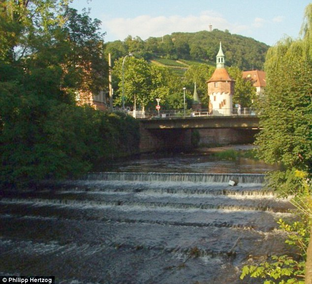 In October, as she cycled home after a party, she was ambushed, raped and then drowned in Dreisam river (pictured)