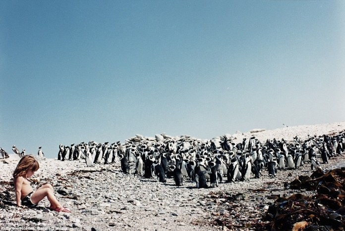 In a penguin colony in Namibia when she was six, the incredible pictures are included in the book Tippi: My Book of Africa