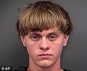 Image result for dylan roof