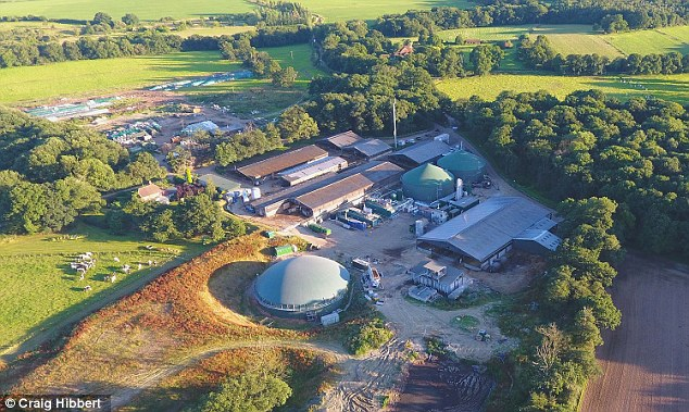 The energy plant at the Crouchland Farm, in Sussex, which is subsidised each year with millions of pounds from taxpayers