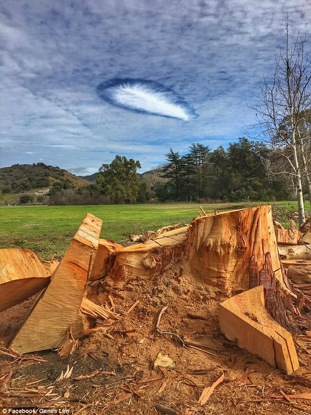 The rare atmospheric phenomenon that recently appeared in SoCal is a strange cloud formation, known as fallstreak, or hole-punch clouds. Pictured: Santa Monica Mountains