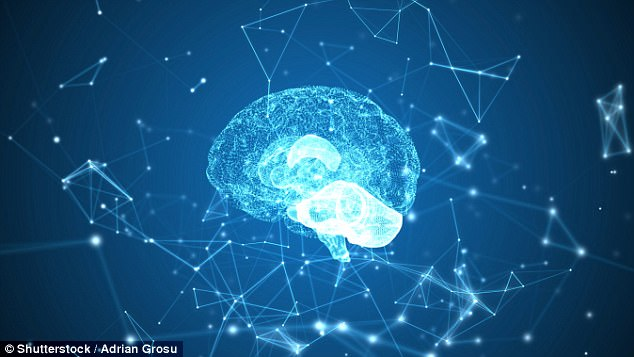 Dopamine governs snap choices so precisely that measuring the brain chemical level right before a decision is made allows researchers to accurately predict the outcome (stock photo)
