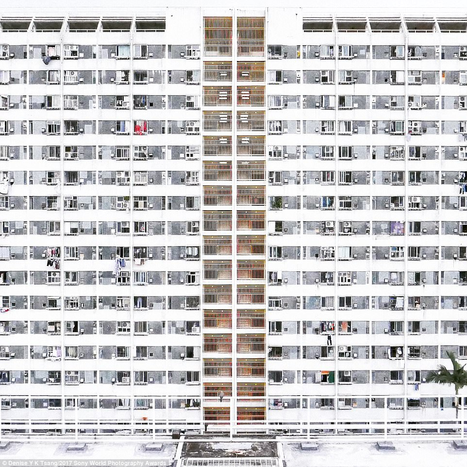 The need to accommodate Hong Kong's dense population has created public housing with 'unique and spectacular facades', according to photographer Denise Y K Tsang