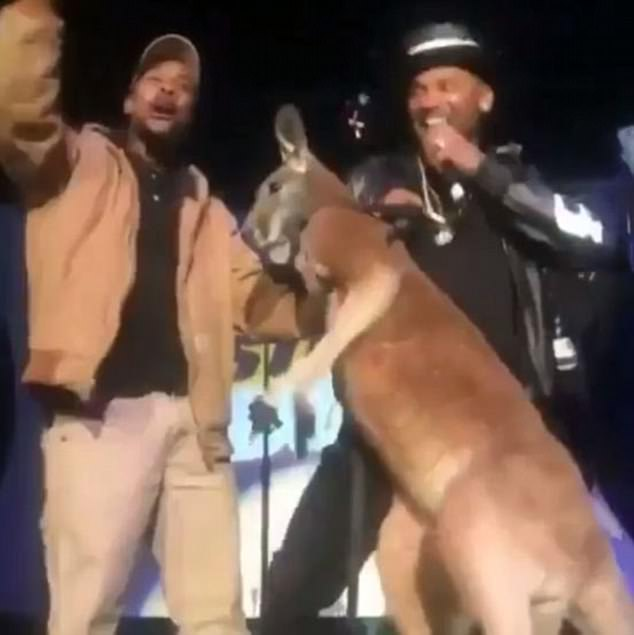 Comedian Mike Epps (right) brought a kangaroo (pictured) on stage with him at a performance in Detroit on Saturday