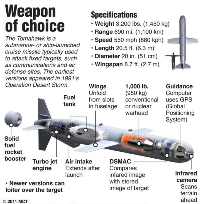 Weapon of choice: The £1million one-ton Tomahawk missiles destroy targets with pinpoint accuracy