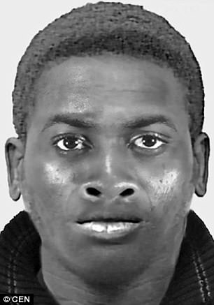 An e-fit of the suspect which was put out by the police. He was captured after a passer-by recognised him from the e-fit